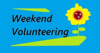 weekend-volunteer-2